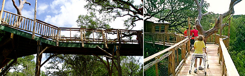 Tree house for physically challenged Kids